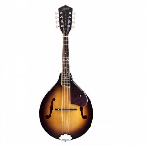 Banjo, mandolini e chitarre resofoniche