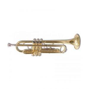 Desir SIB TP 03 L Tromba
