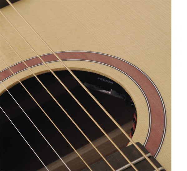 Soundsation Grand Teton- DNCE detail