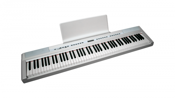 ECHORD SP10 White Side